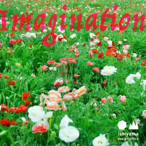 7月 Imagination