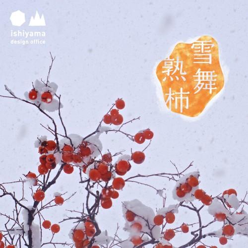 12月 雪舞熟柿