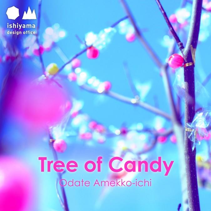 2月 Tree of Candy