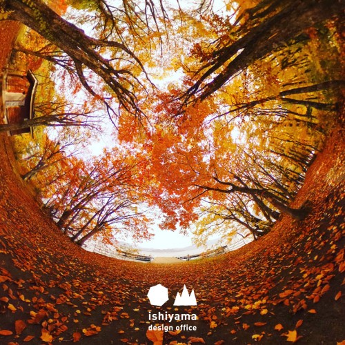 10月 紅葉につつまれる