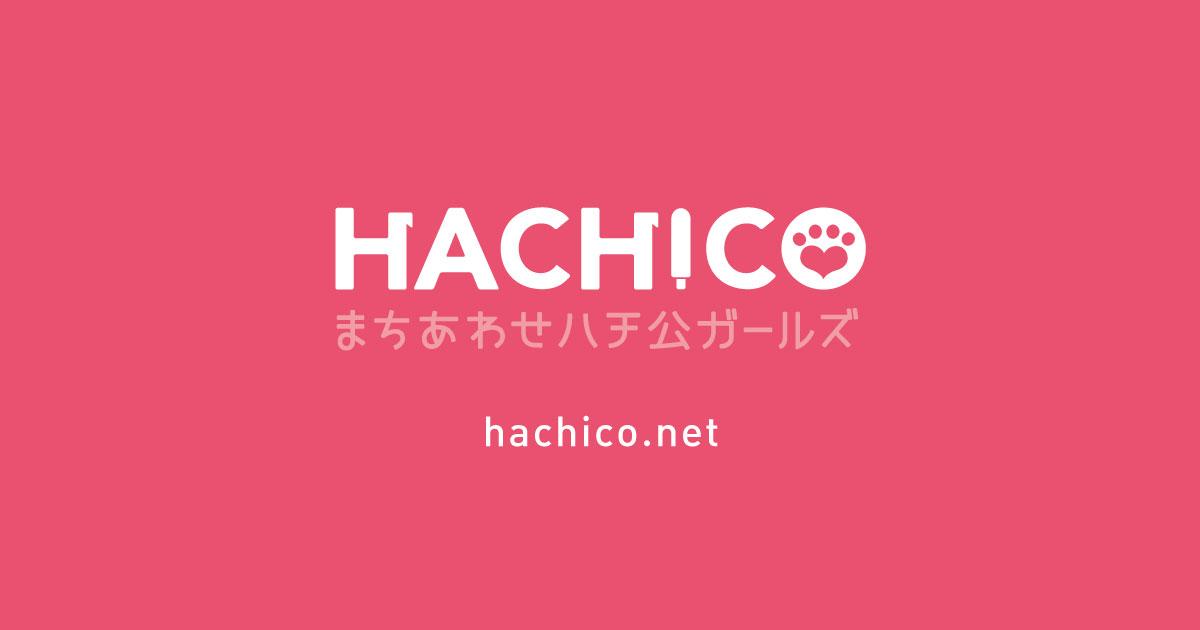 hachico_ogimg
