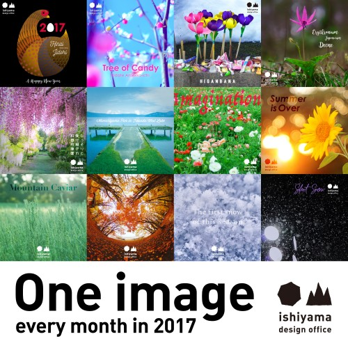 One image every month in 2017