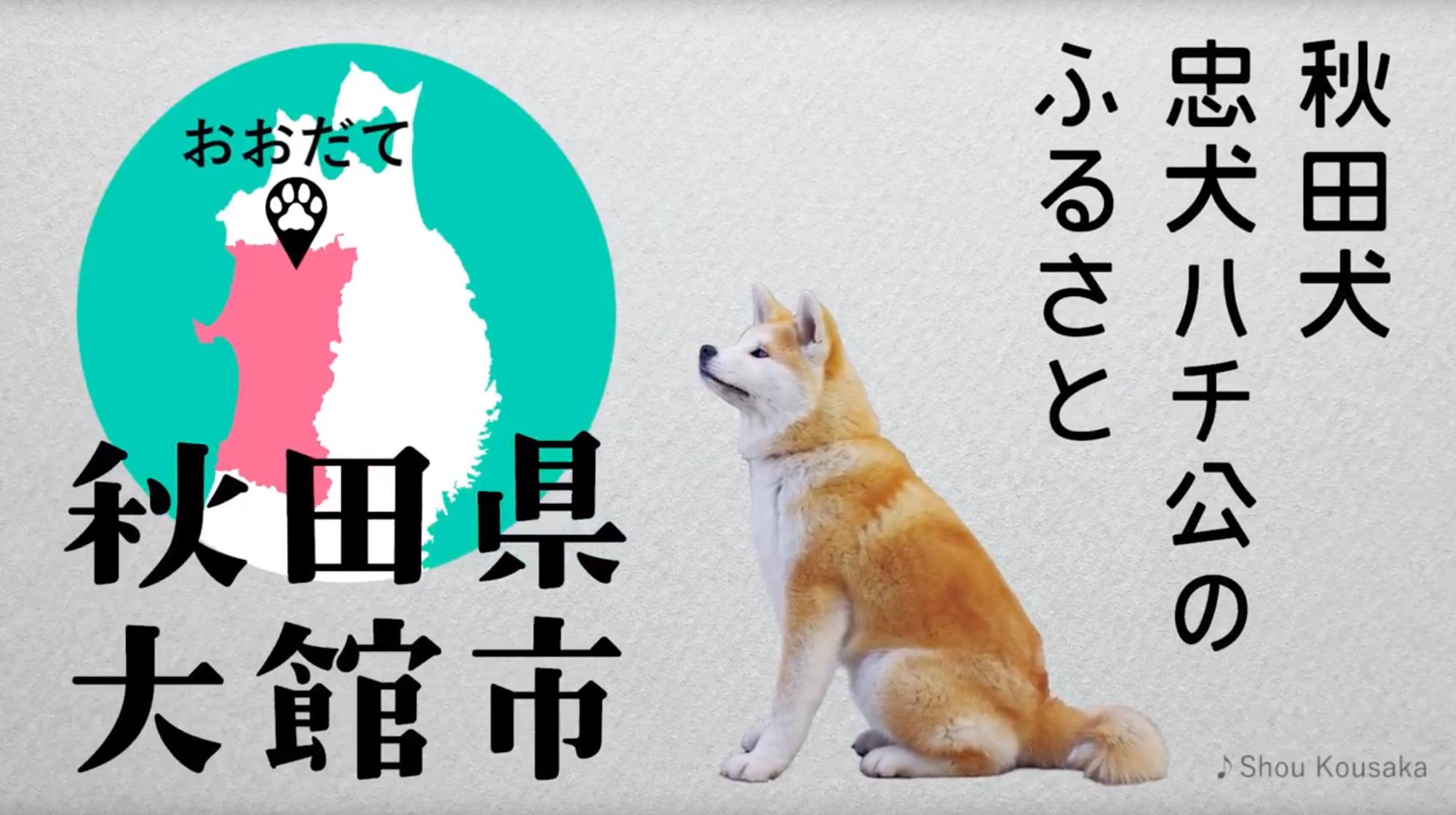 阪急ターミナルビジョン「BIGMAN」「美の国あきた」プロモーション in 大阪2018 大館市PR映像