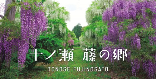 「十ノ瀬 藤の郷」専用サイト